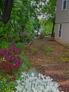 Side Yard - Almost There