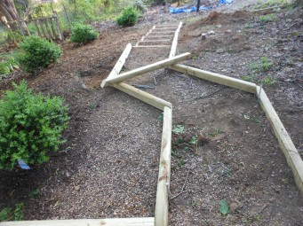 Boxwood Steps - Phase I
