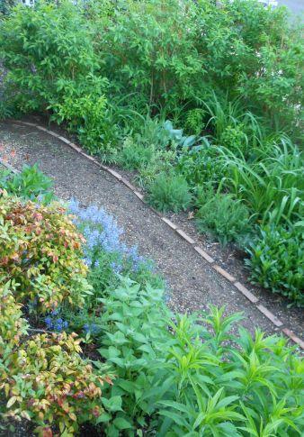 Front Garden2-051314