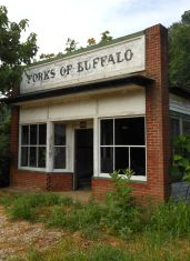 Forks of Buffalo