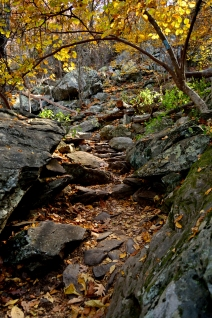Humpback Rock, Blue Ridge Parkway